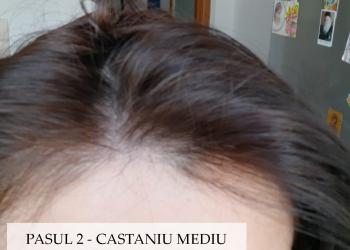 Oana-vopsire-par-2-pasi-dupa-Henna-Mandala-Castaniu-Mediu