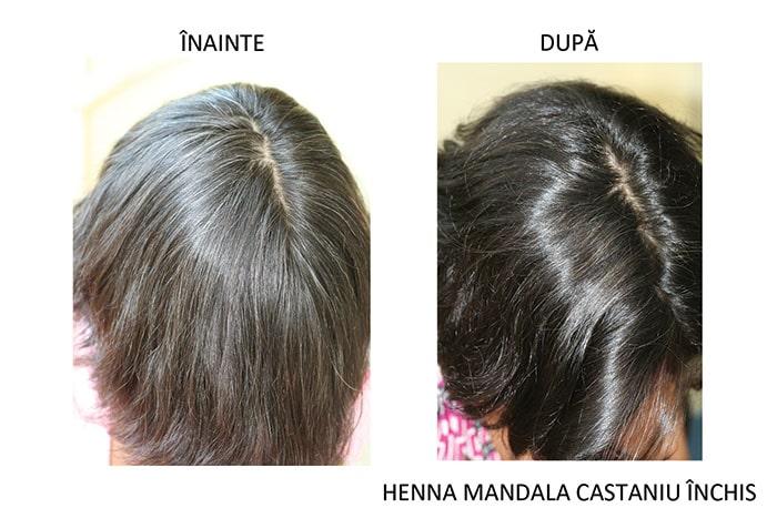 Par inainte si dupa vopsire cu Henna Mandala Castaniu Inchis