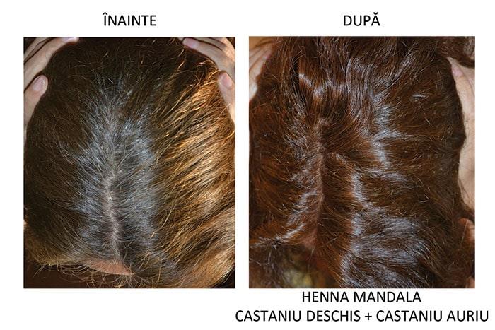 Par inainte si dupa vopsire cu Henna Mandala Castaniu Auriu combinat cu Castaniu Deschis