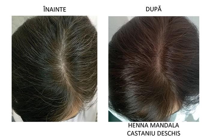 Par inainte si dupa vopsire cu Henna Mandala Castaniu Deschis