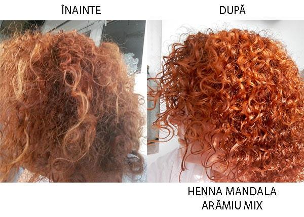 Vopsirea Naturală A Părului Cu Henna Mandala Arămiu Arămiu Mix și Roșu